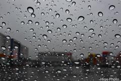フロントガラスに冷たい雨
