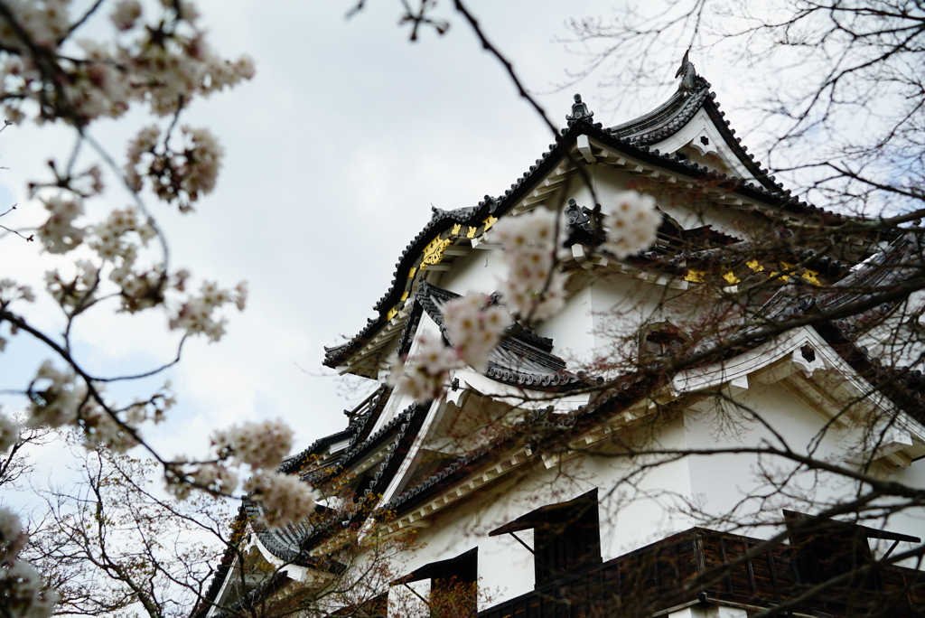 花曇りでお城が綺麗