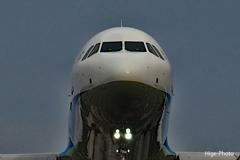 マスクとサングラスは機長と副機長