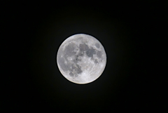 昨夜のお月さんは少しいびつ