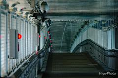 歩道橋…非常灯