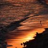 波と光のシンフォニー