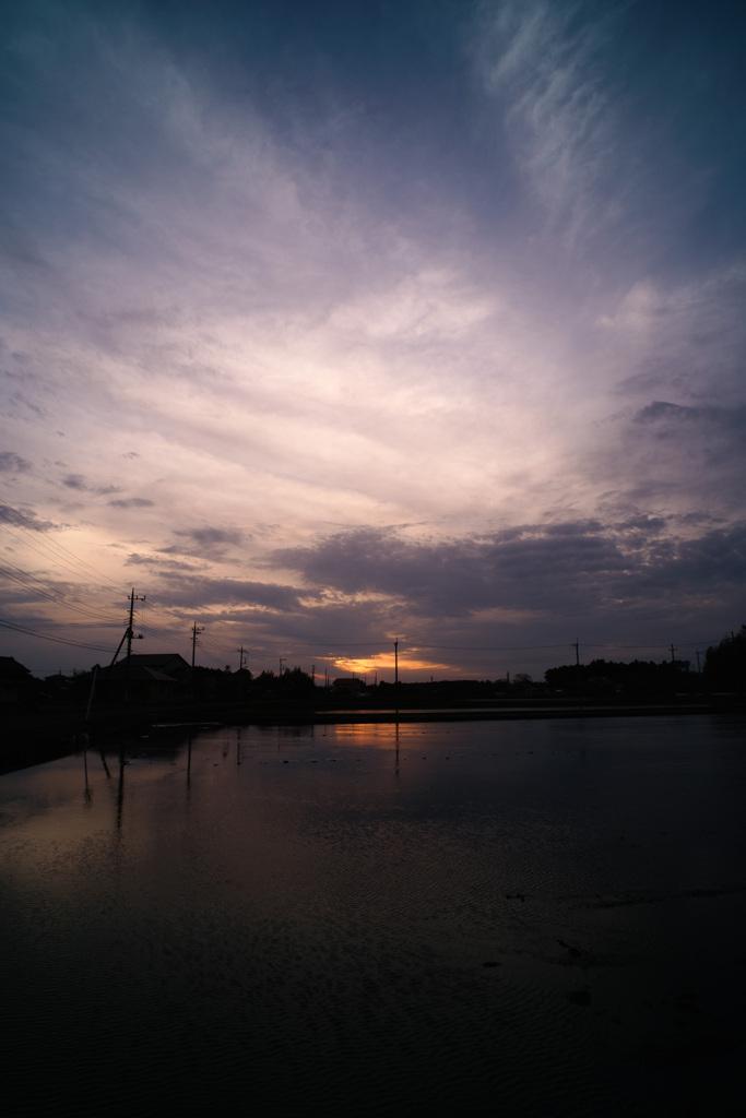 水田の日暮