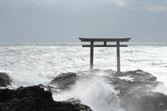 波に洗われて・・・