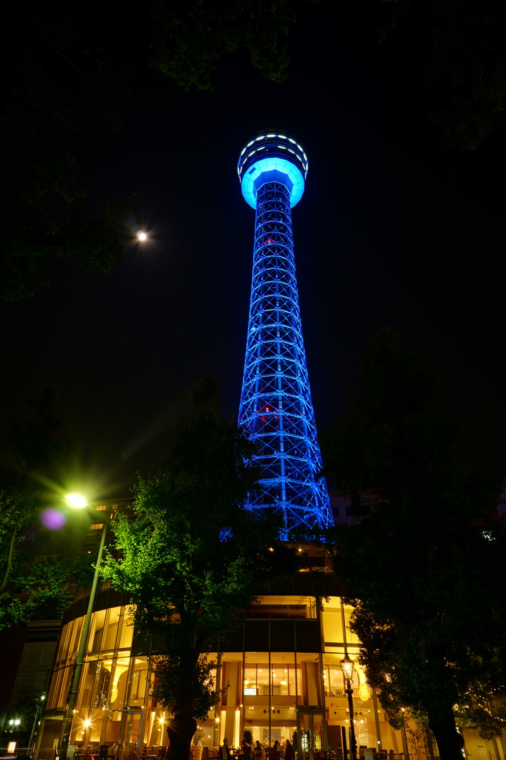 Marin Tower - United Nations 70th blue -
