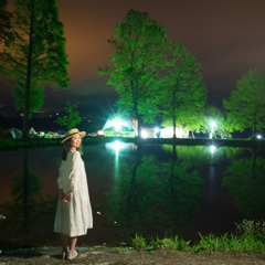 木々の映る池のほとりで