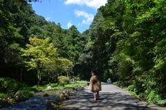 秋芳洞への道