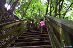 大自然への階段を駆け上がれ!
