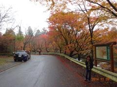英彦山の紅葉2014