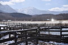 雪のやまなみ牧場