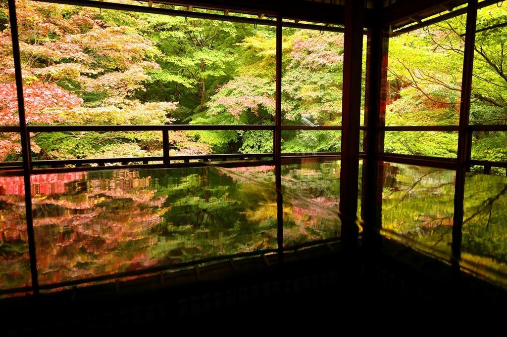 瑠璃光院の秋