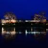 夜桜小湊鉄道②