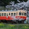 桜キハ200系⑫
