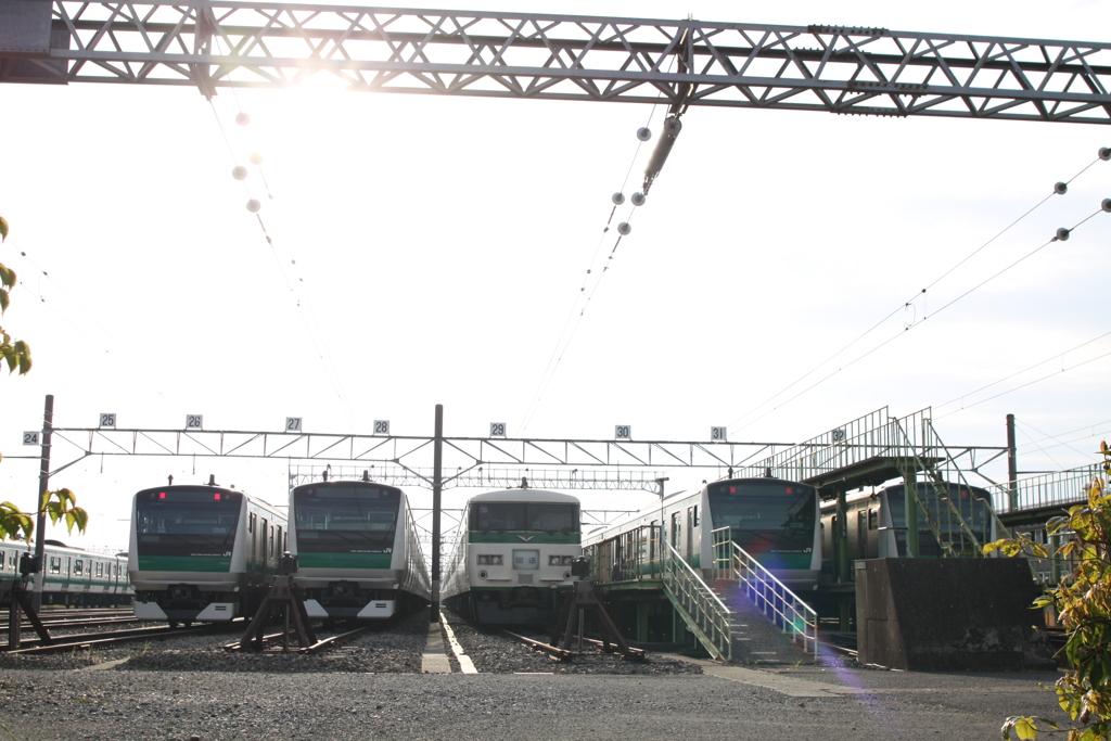 『185系 踊り子号』川越車両センターで静養中 ('◇')ゞ