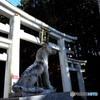 三峯神社の三ツ鳥居