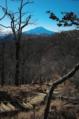 道志から加入道山、大室山へ