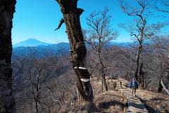 加入道山から望む
