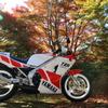 紅葉とバイクと1