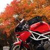 紅葉とバイク1