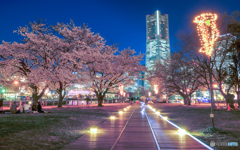 laserbeam-sakura