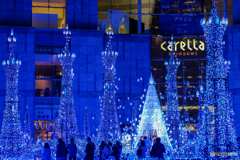 Caretta Illumination 2018-2019