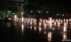 浅草灯篭会祭りー2020祝東京ー