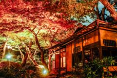 晩秋の灯り