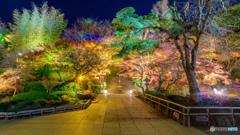 鎌倉の西方極楽浄土