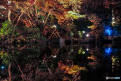 秋の夜間特別拝観2018⑤