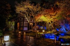 秋の夜間特別拝観2018