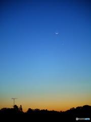 金星と地球照
