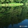 朝の石神井公園02