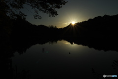 夜明けの石神井公園1