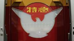 京阪特急の鳩