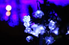 Healing blue light.