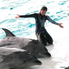 イルカとお姉さんⅣ