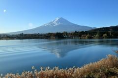 河口湖富士景Ⅱ