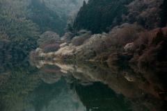 静かな河畔