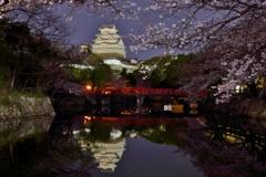 春夜の姫路城