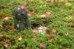 秋の髪飾り ~圓光寺Ⅴ~
