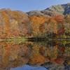 季節を映す池