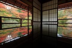 紅葉リフレクション ~旧竹林院~