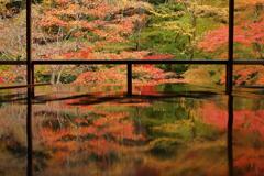 溢れる秋 ~瑠璃光院秋景~