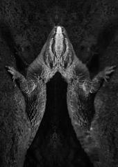 天王寺の怪獣