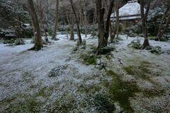 苔寺雪化粧