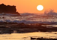 小さなカモメと大きな夕日
