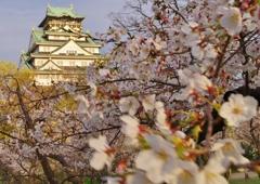 大阪城 西の丸庭園Ⅰ