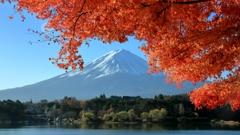 河口湖富士景Ⅰ
