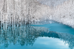 Cold Blue Pond