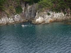 浄土ヶ浜の海の眺め****